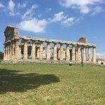 Templi Greci di Paestum Foto