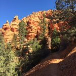 Visiting the Red Canyon in Dixie National Forest (9)