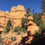 Visiting the Red Canyon in Dixie National Forest (10)