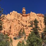 Red Canyon in Dixie National Forest (1)
