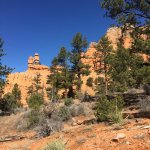 Red Canyon in Dixie National Forest (10)