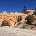 The road tunnel at Red Canyon