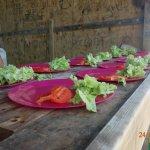 Préparation du repas à l'îlet la Biche