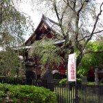 Foto de Ueno Park