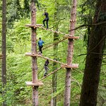 Adventure Park  / Seilpark Interlaken
