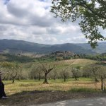 Around Villa Bordoni
