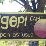 Ngepi Camp Photo