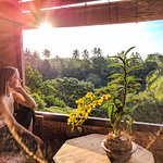 Tree House bungalow - Sunrise