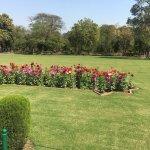 Greenary garden