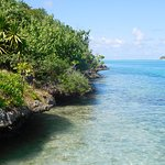 Photo of Ile aux Aigrettes Nature Reserve