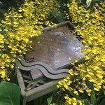 Photo de National Orchid Garden