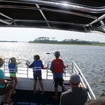 Dolphin Viewing Boat Tours