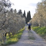 Walk from La Fonte to hotel, through the orchards