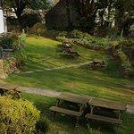 Beautifully maintained garden.