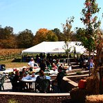 Fall at the Winery!  The Vineyard Tent from the Patio