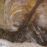 Photo of Lehman Caves