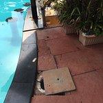 Photo of The Fern Gardenia Resort