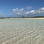 Foto de Taylor Bay Beach