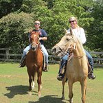 Horse Stables - Family on ride