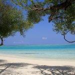 Photo of Sun Island Resort