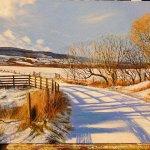 Winter Shadows, by Lynda Taylor.
