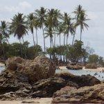 Segunda Praia Beach Foto
