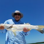29-inch Snook caught on live bait