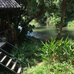 Photo of Khao Sok Riverside Cottages