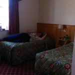 Viking Hotel Foto