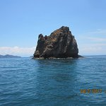 One of the 'rocks' you snorkel around- saw 2 small sharks!