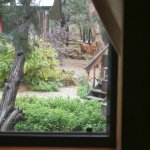 Lakehouse bedroom view to garden