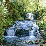 Watersmeet Trail