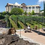 Photo of Hotel & Spa do Vinho, Autograph Collection