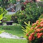 Hotel y Restaurant Samoa del Sur صورة فوتوغرافية