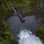 Photo of Multnomah Falls