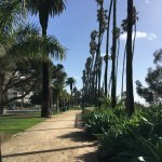 Walk on trail along Ocean Avenue, Santa Monica, CA