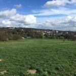 Hampstead Heath Foto