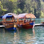 Photo de Bled Island