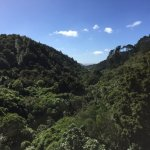 earthquake fault, Zealandia wilderness area rarely visited by tourists