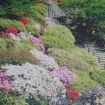 Photo of Senshu Park