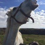 Foto de Shamrocker Irish Adventures - Day Tour