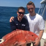The Red Snapper of the day