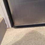 All linoleum and rug corners were caked with filth, as well as the outside of the fridge.