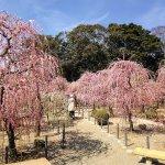 Photo of Yuki Shrine
