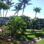Foto de Tropical Tambau