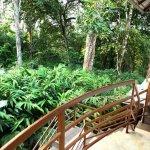 Foto de Munnar - Terrace Greens, A Sterling Holidays Resort