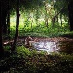 Foto de Bannerghatta National Park