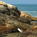 Lighthouse Beach Foto