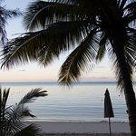 Photo de CocoNuts