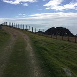 Photo of Mount Maunganui Base Track